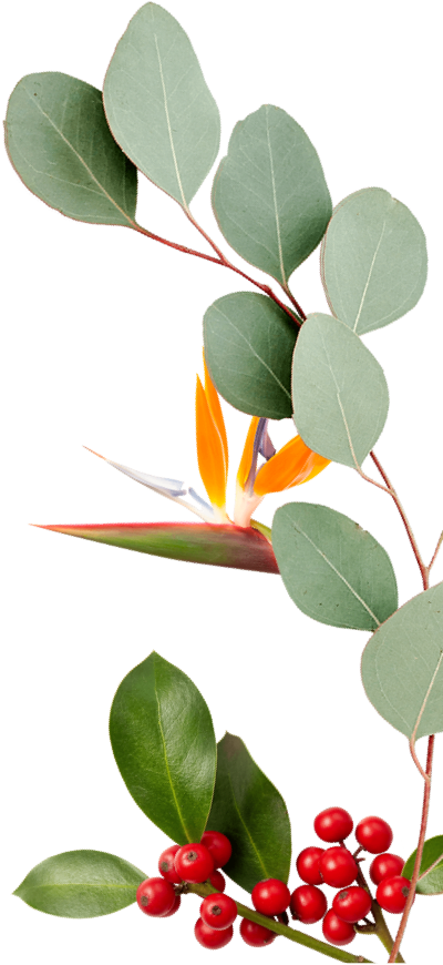 right-side-leaf